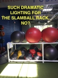 AbsoluteFIT Slamballs
